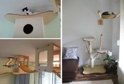 móveis gatos