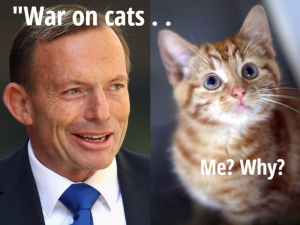 Foto: mkc.org.au/learn/petitioncatwar